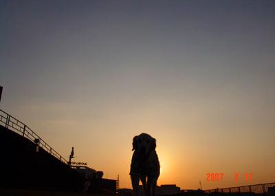 070212_yuuyake_01.jpg