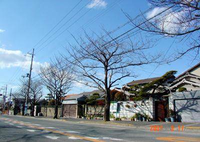 070317_taiin_03_06.jpg