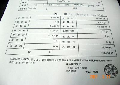 070327_bashi_03_01.jpg