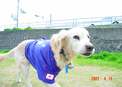 070415_02_hirusan_08.jpg