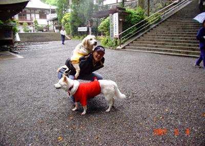 070506_19_onbu.jpg