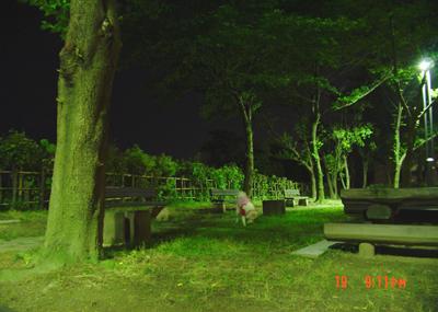 070619_13_0402_jin.jpg