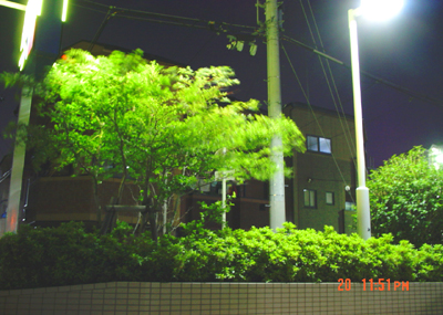 070620_15_02_sanpo_02.jpg