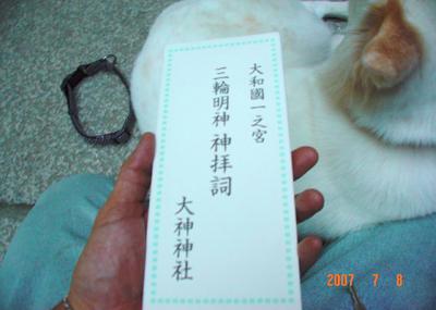 070708_miwa_03_04.jpg