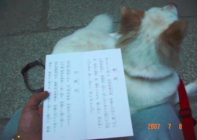 070708_miwa_03_05.jpg