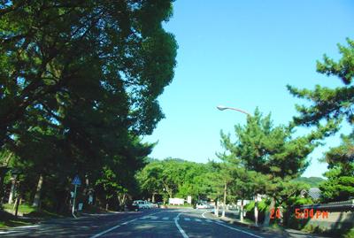 070724_09_naratyaku_01.jpg