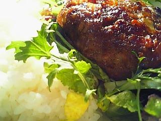 野菜ハンバーグランチ 1-1