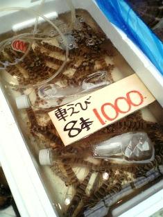 豊野亭天丼002