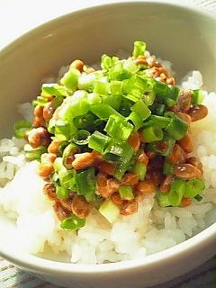 冷や飯に葱納豆の丼1-1