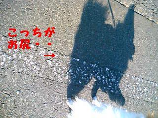 06-01-12_14-05~00.jpg