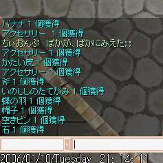 11個ぱか!
