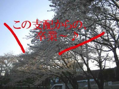 IMG_099600001.jpg