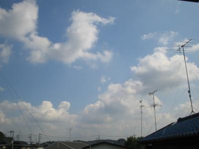 今日はいい天気~