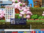 Maple0080.jpg