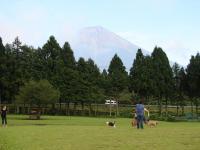 2007_0922-16.jpg