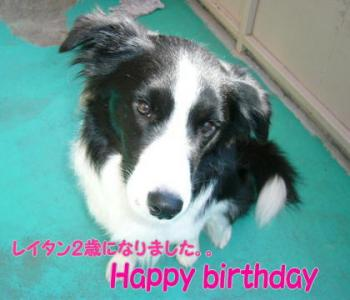 れいたん・・Happy birthday
