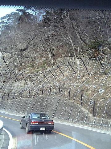 2006_03120012.jpg