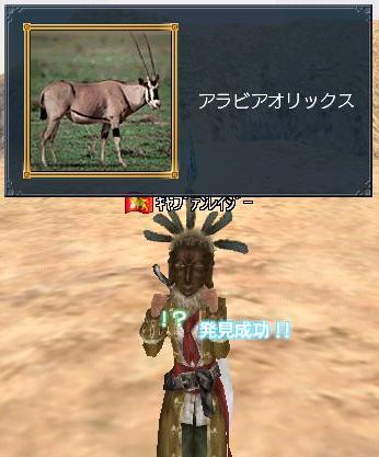 20060117140258.jpg