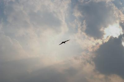 雲の向こうへ