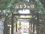 20061211202439.jpg