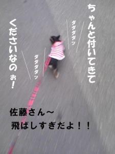 20070915170700.jpg