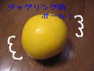 20060529-3.jpg