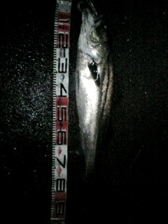 87cm-1