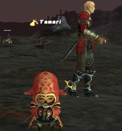 神忍者とワタス