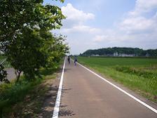 虫掛-藤沢間の道