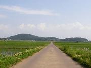 りんりんロード脇、筑波山近くの田園風景