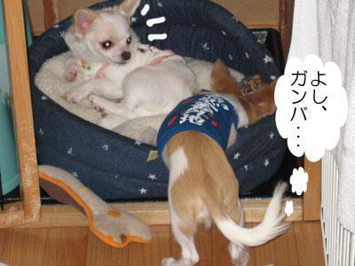 2007.09.01②