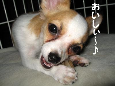 2007.09.12②