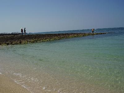 beach11feb07.jpg