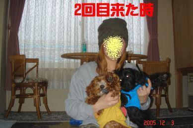 DSC02175.jpg