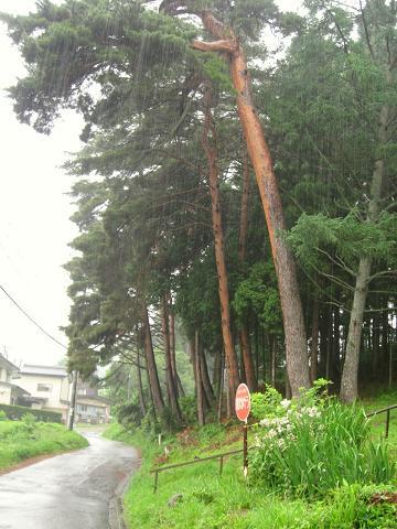降りしきる雨の中、いざ塩尻峠へ