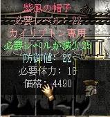 20051125164536.jpg