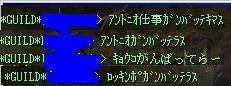 20060127222841.jpg