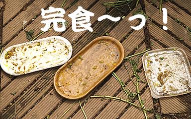 060615_kuki5.jpg