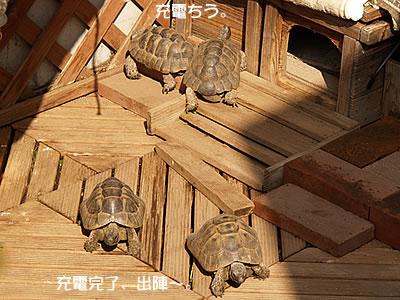 061027_osu1.jpg