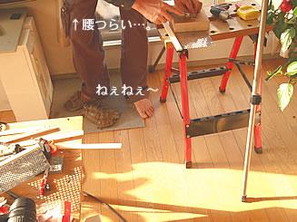 070218_kohaku3.jpg