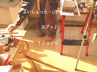 070218_kohaku4.jpg