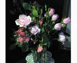 玄関に薔薇