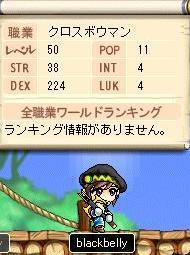 Maple0575@.jpg