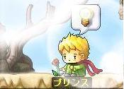 Maple0586@.jpg