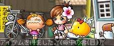 Maple0718@.jpg
