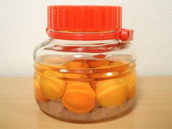 杏酒 0日(仕込み)