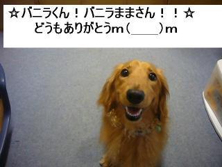 P1070015.jpg