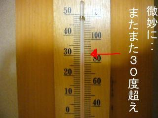 またまた30度超え