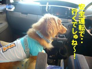安全運転でね★