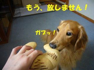放さない!
